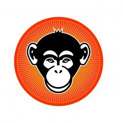 Xenomania2 Website Brandis13
